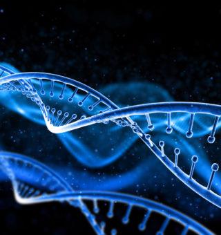 Factores-genéticos-de-la-diabetes